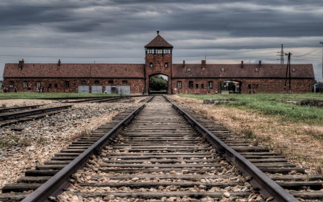 Auschwitz Study Visit